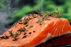 The terrible cost of Scotland's salmon farms