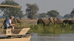 Jeremy Paxman: Mindfulness? I'd rather go on safari